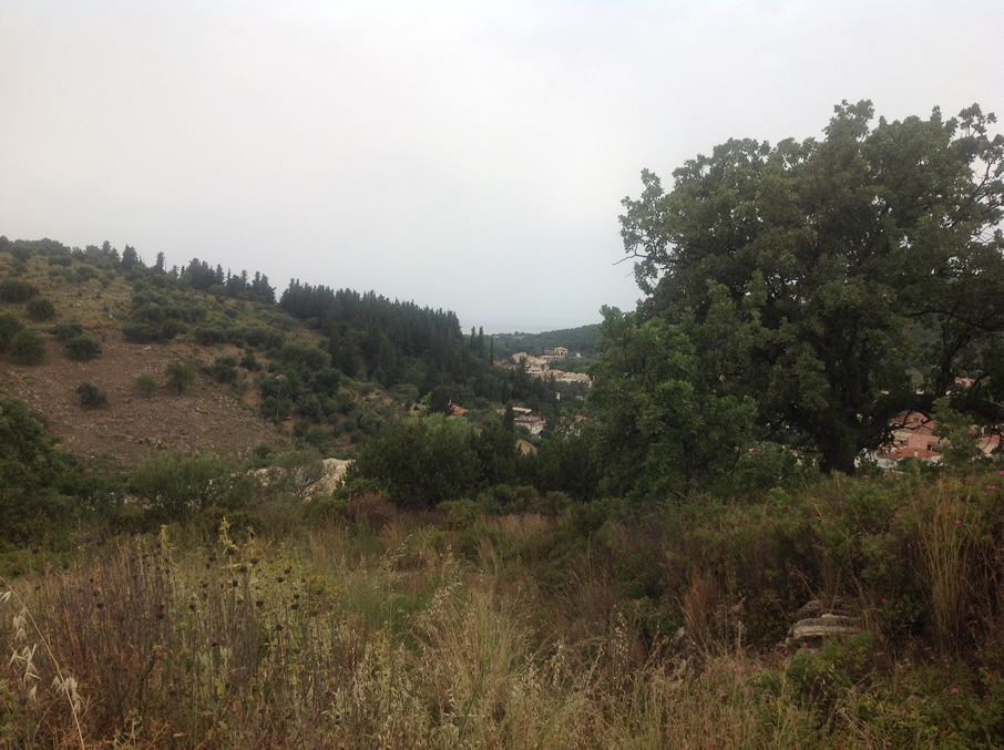 plot of 12.000 m2 for sale