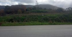 Land for sale 4,157.53 sq.m. with a building permit opposite Lidl Igoumenitsa. (703)
